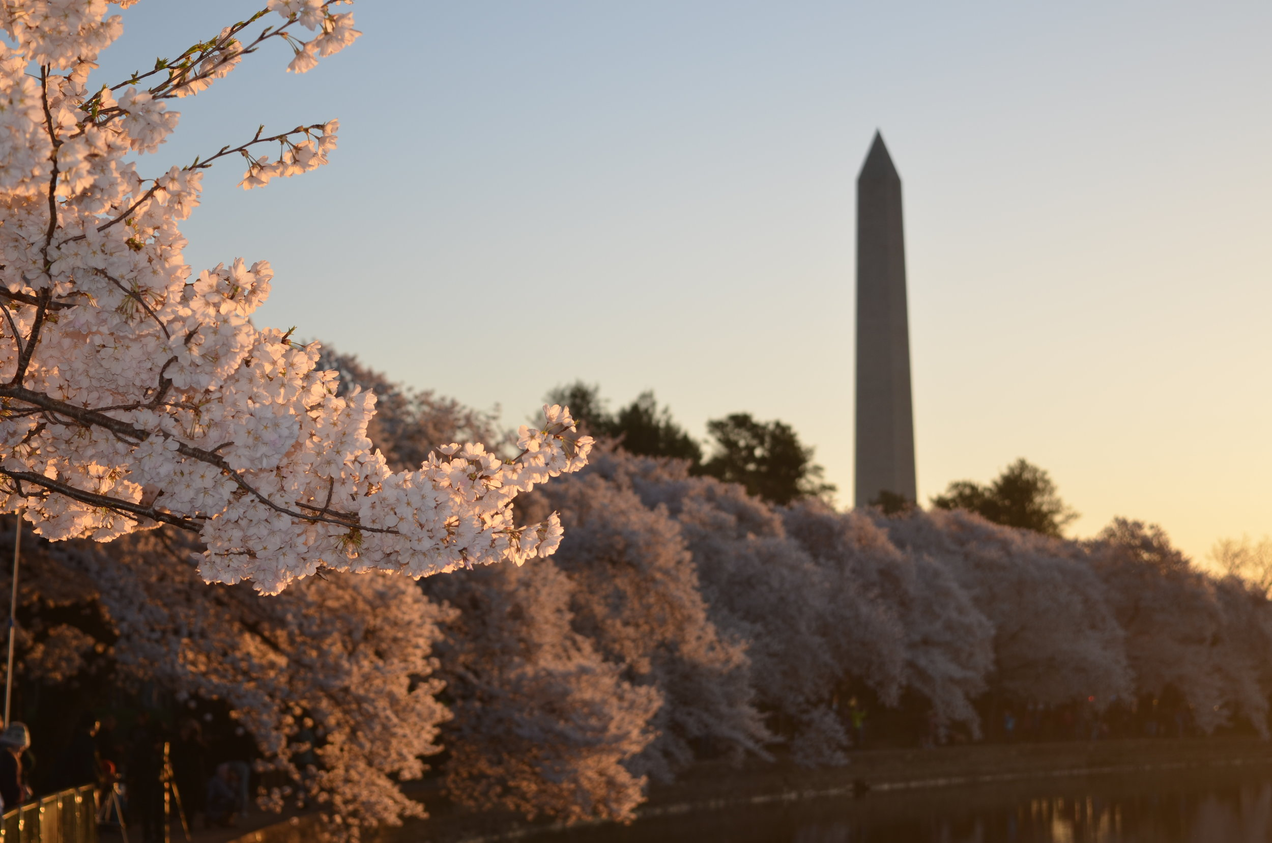 Washington dc hosts events with thought leaders