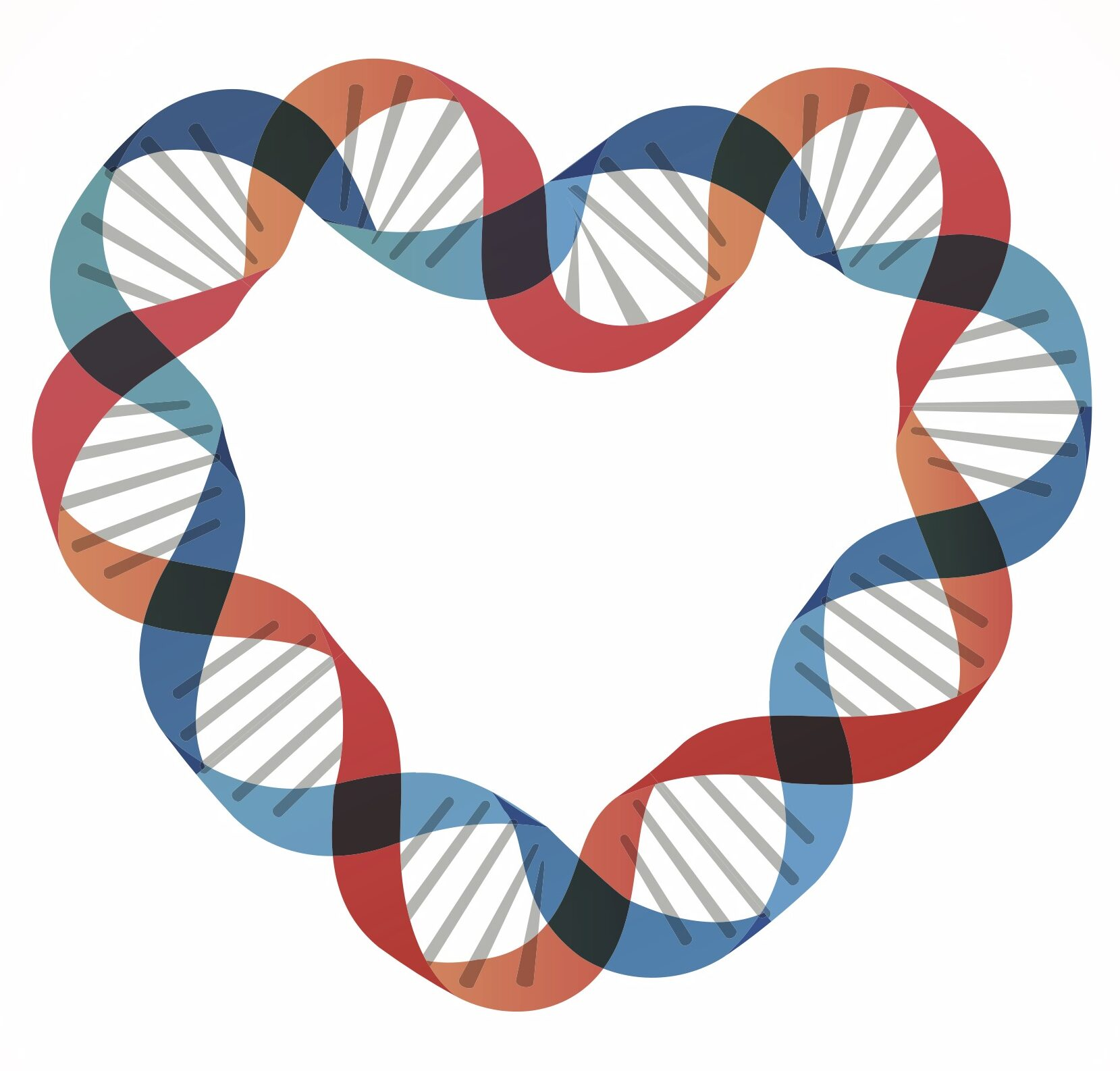 dna strand in the shape of a heart